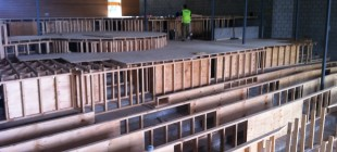 Carpentry and plastering works for Mentone Grammar